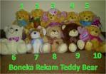 Boneka Rekam Suara Teddy Bear – 096