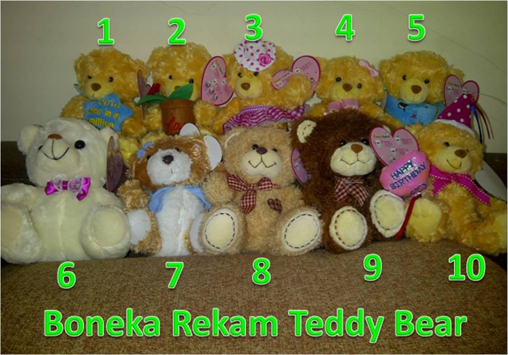 Boneka Rekam Teddy Bear
