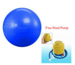 Gym Ball Bola Fitness 65cm FREE POMPA – 606