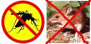 ULTRASONIC Pengusir Tikus, Kecoa, Nyamuk, Lalat, Serangga Pest Control - 665